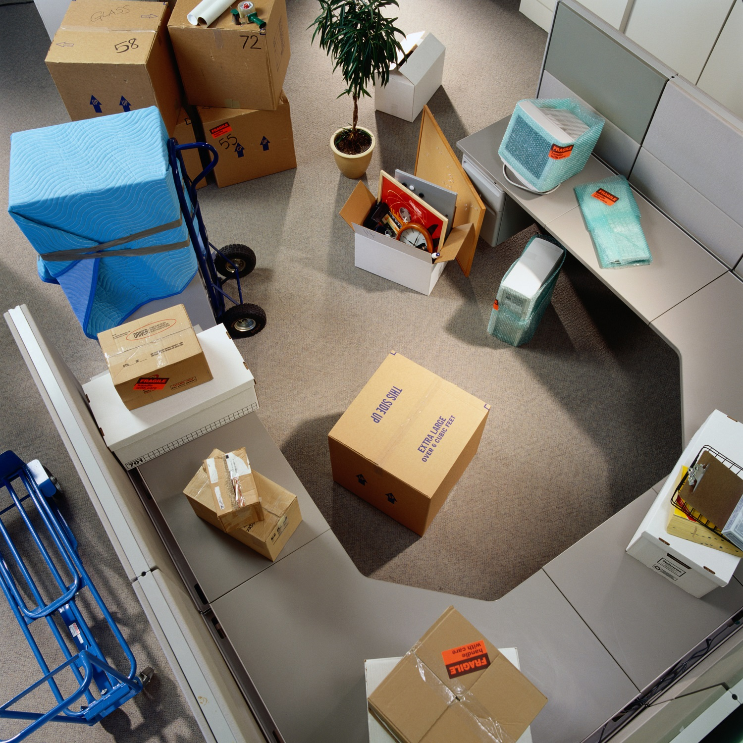 Office And Employee Relocation